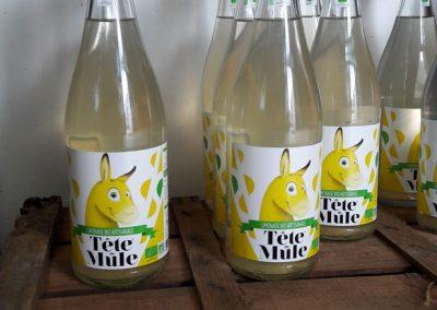 Limonade Tête de Mule